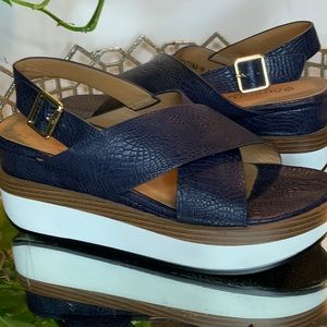 Patrizia 8 Sandal Navy Women's Shoes #L1